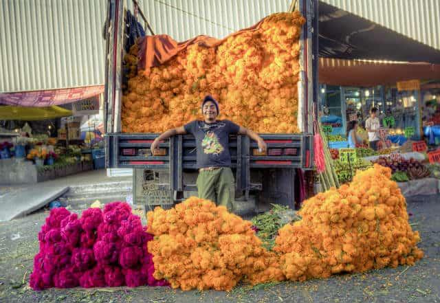 Mercado de Jamaica Carlos Adampol Galindo