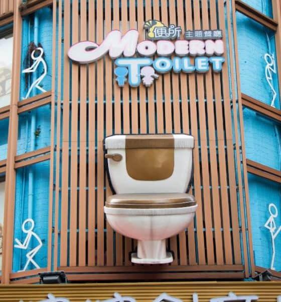 Modern toilet. Foto: toilography.com