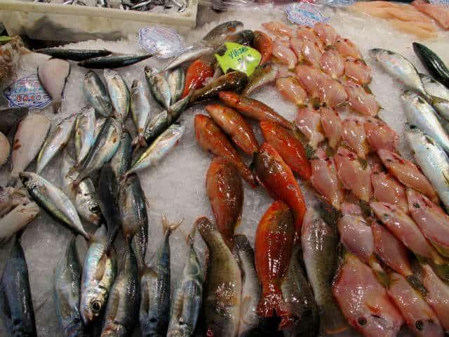 Pescados El Coleccionista de Instantes