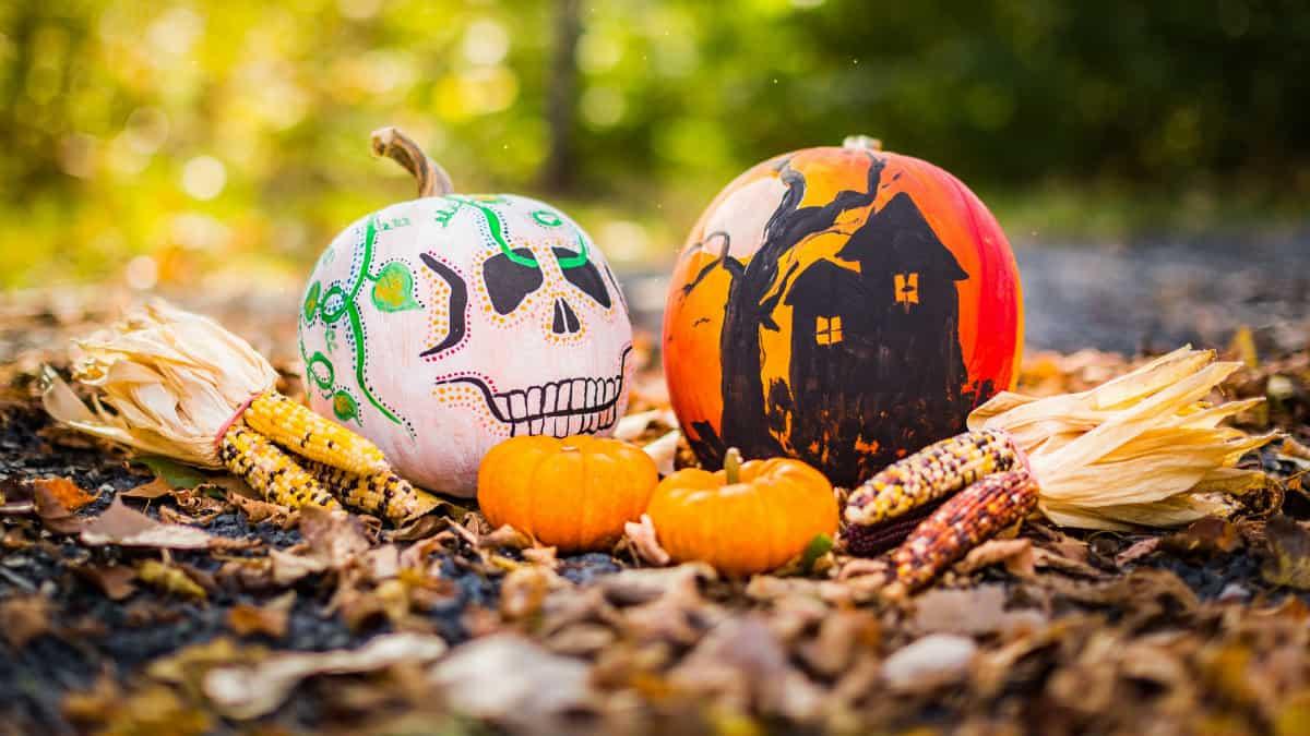 Portada. Diferencia entre Halloween y Día de Muertos. Foto: Drew Hays