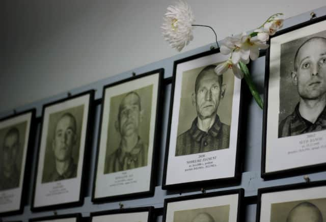 Retratos Auschwitz Nick Perrone