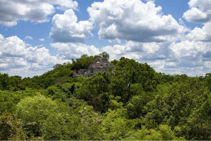 Visita en Calakmul.Foto.Jorgerom.1