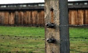alambrado Auschwitz chany crystal