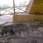 sapo ruinas de comalcalco