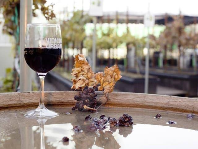 copa de vino vinicola urbana