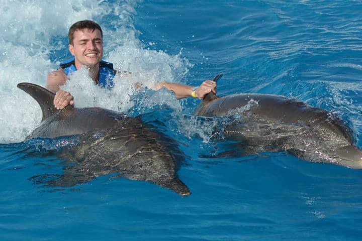 Descubre el mejor lugar para conocer la vida marina ahora en Roma.Foto.Dolphin Discovery.1