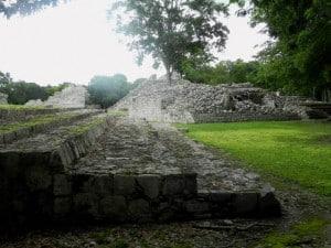 Edzna arboles en los templos (46)