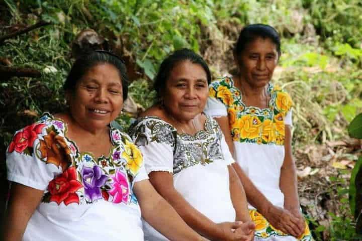 La calidad de la gente yucateca.Foto.Sipse.16