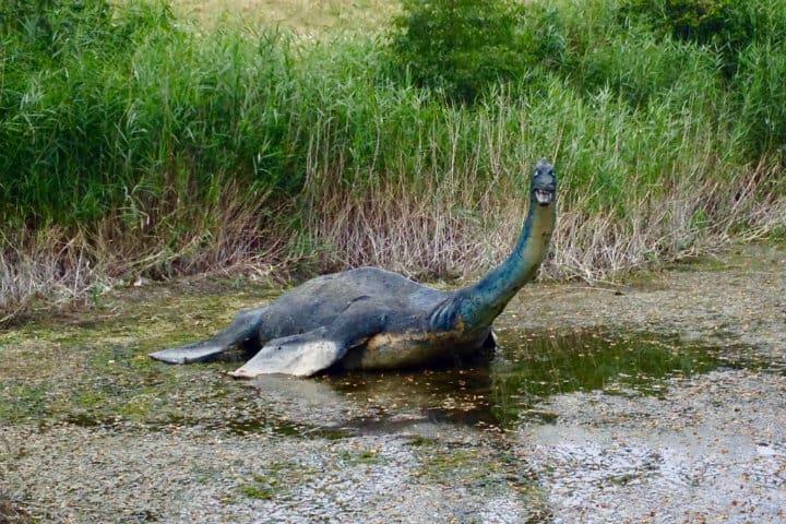 Mounstro del lago Ness. Imagen: Escocia. Archivo