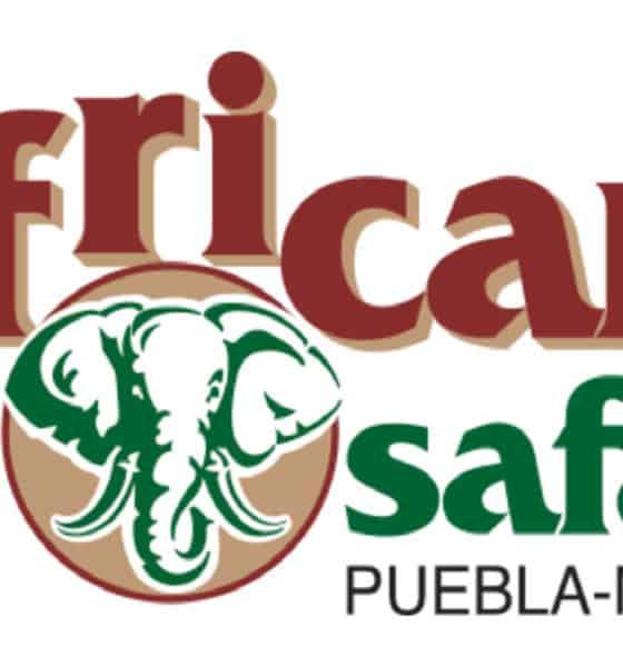Portada.Video de Africam Safari.Foto.Africam.myshopify