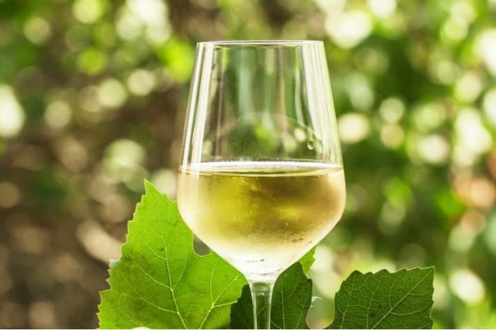 Un buen vino blanco.Foto.Okdiario.5