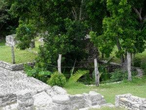 mayapan cenote