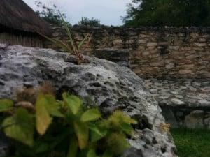 mayapan naturaleza y piedras