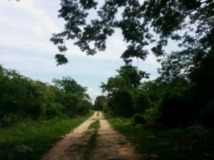 mayapan rumbo a cenote