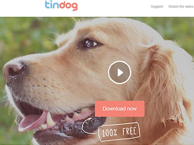 tindog-bajar