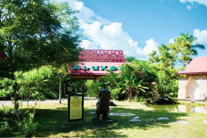 Bioparque. Imagen: Chiapas. Archivo