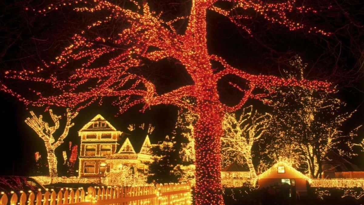 Portada Decoración de casa navideña. Imagen Vaze 3