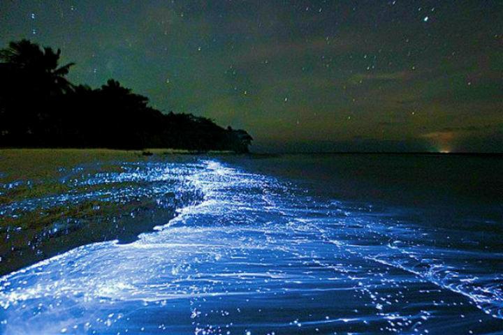 Vadhoo Island te cautivará con su encanto nocturno Foto Archivo