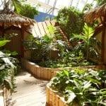 cabanas tropical islands alemania