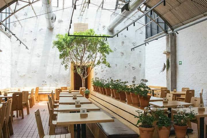 Restaurante Máximo Bistró. Imagen: CDMX. Archivo