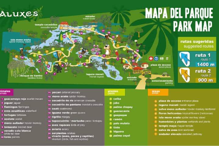 Mapa del Bioparque. Imagen: Chiapas. Archivo