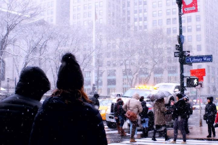Video hombre esquía en Nueva York
