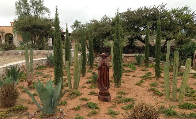 campos lavanda mineral de pozos 04