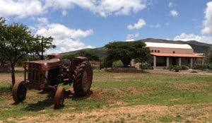 campos lavanda mineral de pozos 06