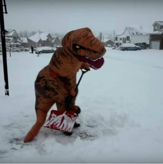 Video: Dinosaurio retira nieve de su casa Foto: Archivo