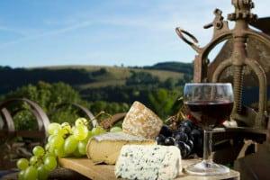delicias queretaro queso y vino queretaro
