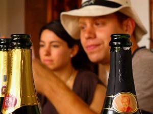 delicias queretaro vinos queretaro