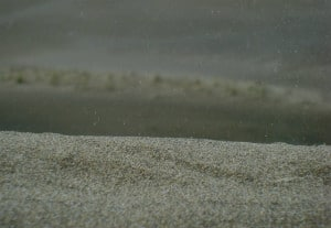 dunas del Sabanal AGME