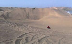 dunas del sabanal desierto