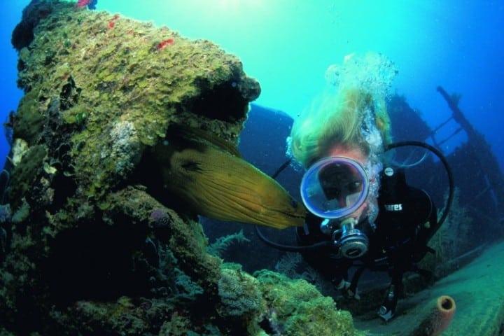 Ver-el-desarrollo-de-los-arrecifes-es-sorprendente-Foto-Código-Único-4