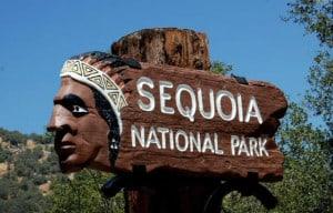 parque secuoyas california