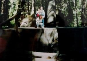 parque secuoyas foto Virginia Garcia 02