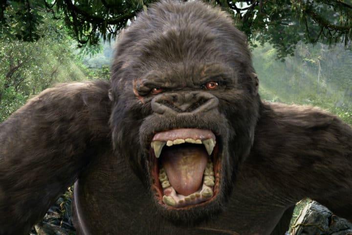 04_Skull Island Reign Of Kong Ride Film