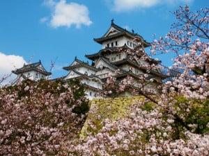 Cerezos Japon Castillo himeji foto Hiroaki Kaneko