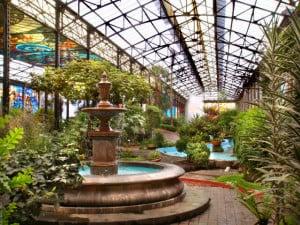 Ciudad de Toluca jardin Botánico foto Lucy Nieto