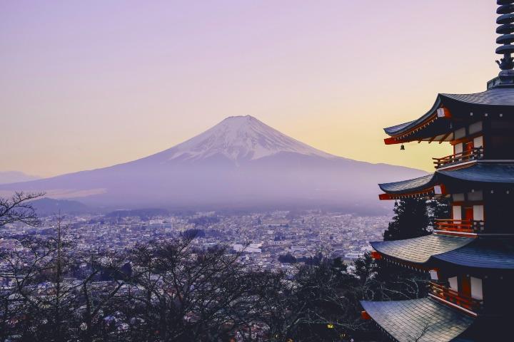 Cerezos de Japón EN PRIMAVERA