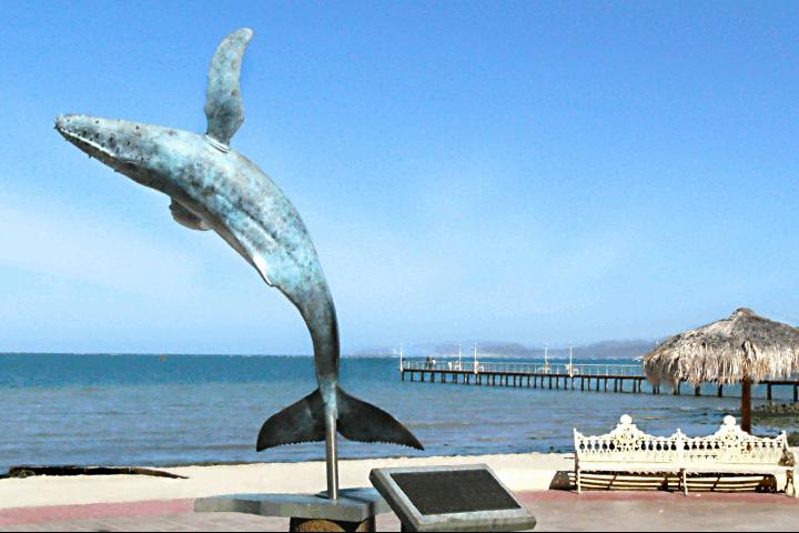 El-encanto-de-la-ballena-jorobada-Malecón-de-la-Paz-Foto-Tr-9ek-Earth