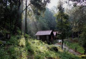 los azufres spa natural bosque y cabañas