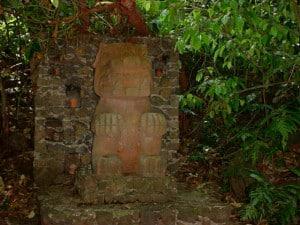 Nanciyaga jaguar