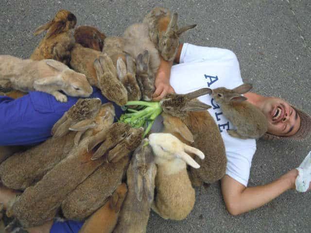 isla conejo ataque