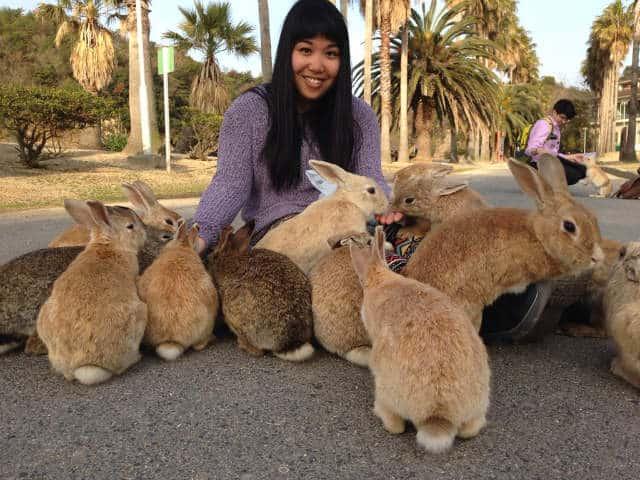 isla conejo japon