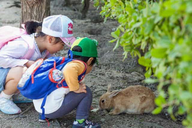 isla conejo niños