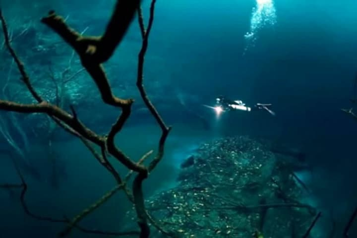 Cenote Angelita.Foto.Dailymotion.1