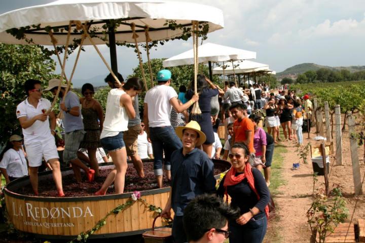 Eventos en viñedos La Redonda.Foto.DTM Querétaro.7