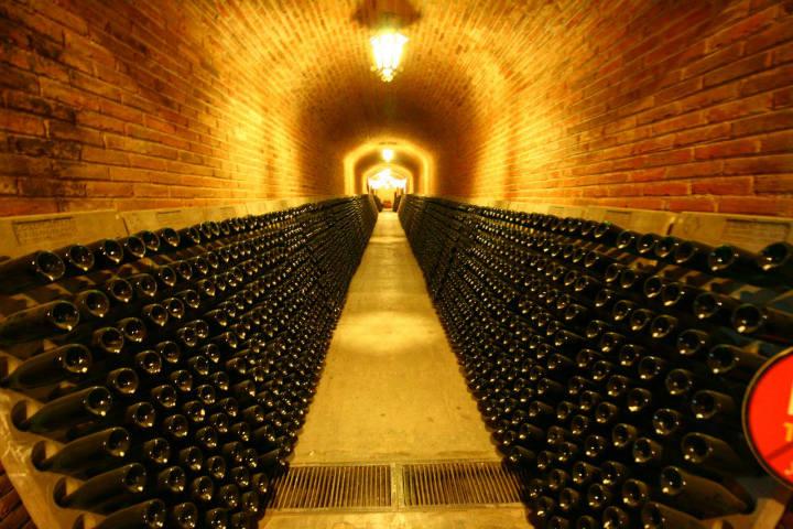 Quedarás impresionado con sus cavas subterraneas.Foto.Christian Ramiro González.4
