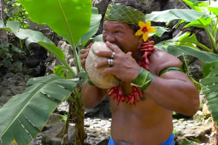 Video pelando un coco con los dientes.Foto.Laughing Squid.1